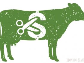 美国40年经验乳业专家如何评价贸易战?成本损失高达187美元/头!