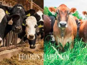 牛奶价格如何影响传统和有机饲养模式