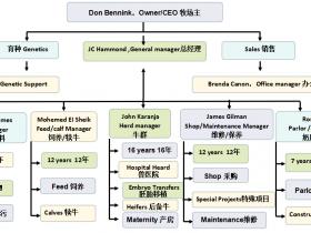 规模化牧场的管理要点-Donald T. Bennink 博士报告亮点