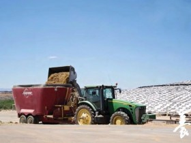 剔除影响青贮饲料质量的有害因素