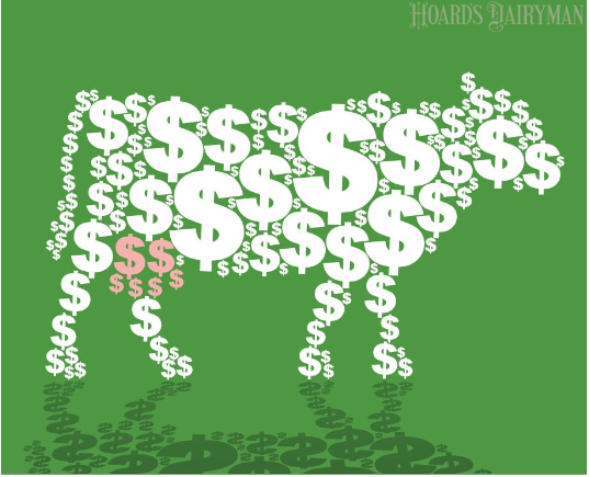 美国家庭牧场财务管理建议:现金流可能带来虚假的安全感
